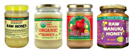 Use of YS Organic Bee Honey for the Treatment of Diseases